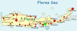 Flores Tour Information