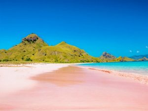 Komodo trip to Pink beach
