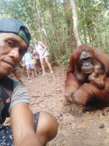 Orangutan trip