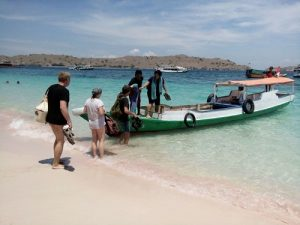 Pink beach Komodo travel