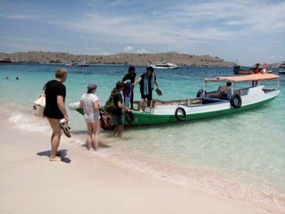Pink beach Komodo travel