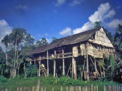 Rimba lodge Borneo Island
