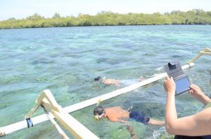 Snorkeling trip to Gili Sulat