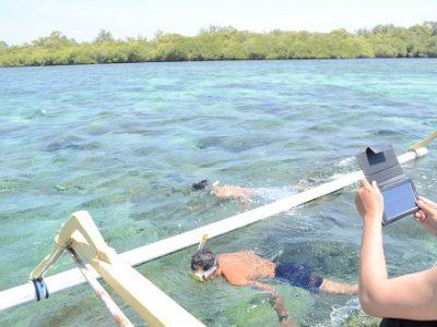 Snorkeling trip to Gili Sulat