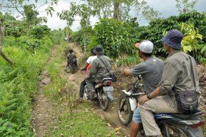 Trekking trail mount Tambora