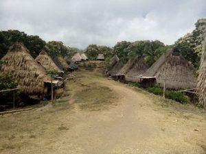 Wologai traditional village tour flores kelimutu