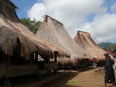 Wologai village flores island tour
