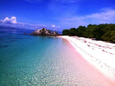 komodo travel to pink beach